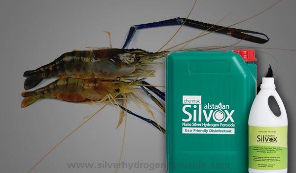 Aquaculture Disinfectant - Silver Hydrogen Peroxide