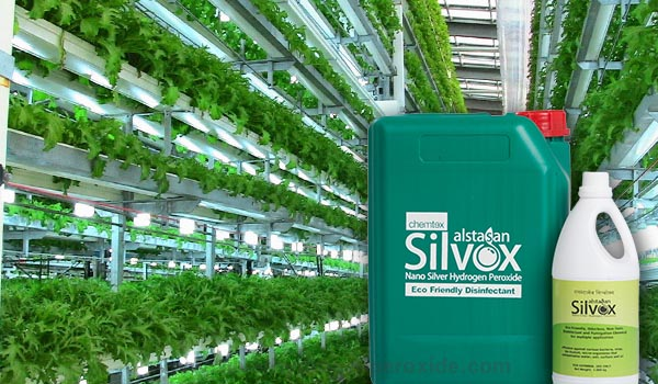 Nursery_and_High_tech_cultivation_Sanitation1.jpg