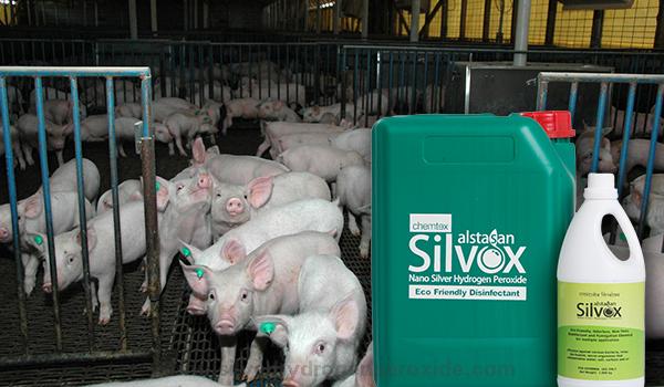 Pig_Pen_Disinfection11.jpg
