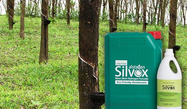 Rubber_Farm_Sanitation1.jpg